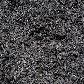 black-bag